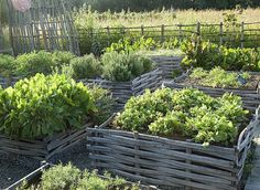 idees potager