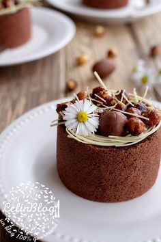 Mini charlottes au chocolat Desserts Français, French Desserts, Plated Desserts, Mini Charlotte, Charlotte Cake, Chocolat Cake, Mini Cakes, Let Them Eat Cake, Cake Cookies