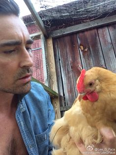 Lee Pace looking at this chicken like he loves this chicken I think he loves this chicken I wish I was this chicken P.S. Lee why is your shirt not doing proper shirt things right now it is (a) distracting and (b) reminding me of this dream I had P.P.S. had a dream about you last night <3