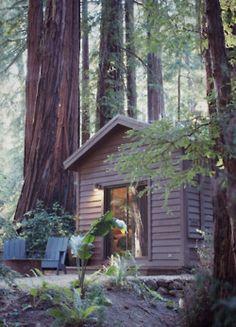 Serene cabin.