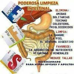Limpieza profunda a tu cuerpo Herbal Extracts, Luz Natural, Natural Medicine, Vitamins And Minerals, Aloe, Health And Beauty, Herbalism, Thats Not My, Healthy Living