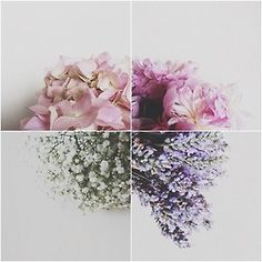flowers lavendar peonies hydrangeas baby's breath fleurs