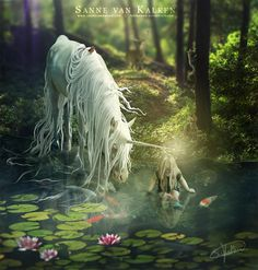 """** """"Unicorns remind us of who we truly are. While angels work through the Heart, unicorns work with the Soul. Their horn can be likened to a magic wand, pouring out divine energy. Wherever they direct this light, healing takes place"""" ~ words by Diana Cooper ♥♥  Blessing of a Unicorn ~ Beautiful Art by Sanne van Kalken Unicorn And Fairies, Unicorn Fantasy, Unicorns And Mermaids, Unicorn Horse, Unicorn Art, Magical Unicorn, Fantasy Art, Baby Unicorn, Magical Creatures"""