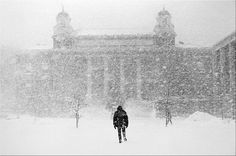Syracuse Winter Photograph by Chet King - Syracuse Winter Fine Art Prints and Posters for Sale Syracuse University, I Love Ny, My Town, Sale Poster, Fine Art Prints, New York, King, Alma Mater, Wall Art