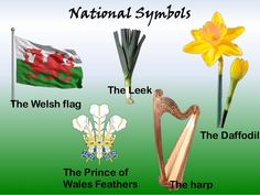 National Symbols The Leek The Welsh flag The Daffodil The Prince of Wales… Welsh Symbols, Celtic Symbols, Symbol Of Wales, Springtime Quotes, Welsh Tattoo, Learn Welsh, Celtic Images, Welsh Words, Wales Flag