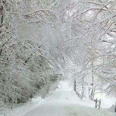 264 Best Winter scenes so pretty images in 2018 | Winter Scenes