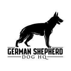 Homepage | German Shepherd Dog HQ