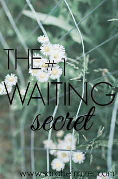 The #1 Waiting Secret - Sarah E. Frazer