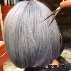 Short grey hair  @studio34nyc ⠀⠀⠀⠀⇰Tag a friend also ⠀⠀⠀Follow Neal Fine.hair ⠀⠀Follow Neal Fine.hair ⠀Follow Neal Fine.hair Follow Neal Fine.hair ⠀ #hair #love #hairstyle #instahair #hairstyles #haircolour #haircolor #hairdye #hairdo #diyvideo #tutorial #braid #fashion #balayage #diy #longhair #style #video #curly #black #brown #blonde #brunette #hairoftheday #hairvideos #hairvideo #hairtutorial #hairfashion #hairofinstagram #coolhair