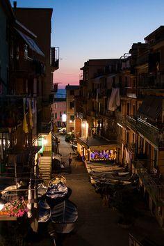 Cingue Terre, Italy at theperfectgray.com #Manarola