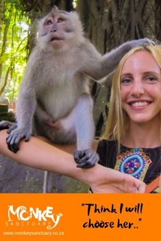 Being one of only eight free-release primate sanctuaries globally our residents are comfortable with the guests and often choose their favourite! North West Province, Elephant Sanctuary, Living Environment, Create Awareness, Primates, Cool Things To Make, Squirrel, Monkey, This Is Us