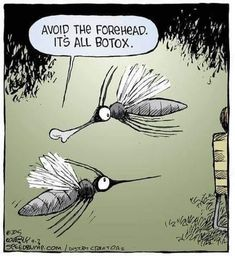 Avoid the forehead. It's all Botox. Cartoon Jokes, Funny Cartoons, Funny Comics, Funny Jokes, It's Funny, Funny Texts, Botox Quotes, Botox Forehead, Speed Bump Comic