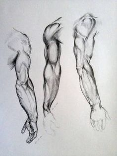 Anatomy Drawing Tutorial Arm Sketches by AdanMGarcia - Arm Drawing, Male Figure Drawing, Body Reference Drawing, Figure Sketching, Body Drawing, Anatomy Reference, Art Reference Poses, Life Drawing, Human Figure Sketches