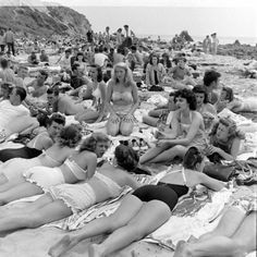 Vintage bikini babes sunbathing on Balboa Beach, CA in Photo Vintage, Vintage Swim, Moda Vintage, Vintage Bikini, Beach Photos, Old Photos, Balboa Beach, Foto Madrid, Bathing Beauties
