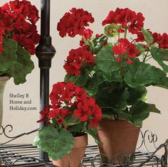 Potted Fake Red Geranium Floral Decor 17 inches
