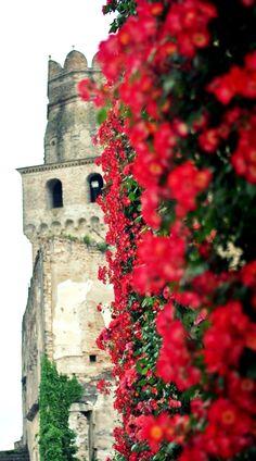 Vino in Villa 2014 Castello di San Salvatore, Susegana