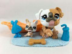 Amazon Com Littlest Pet Shop Pug Dog With Accessory Toys