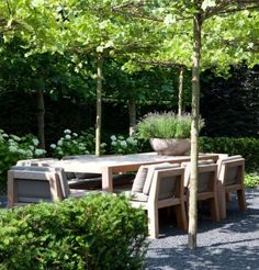 outdoor table with comfy chairs, under the trees ❤ (I prefer grass for the ground though) White Dining Room Chairs, Blue Velvet Dining Chairs, Outdoor Dining Chair Cushions, Accent Chairs For Living Room, South Wales, Garden Furniture, Outdoor Furniture Sets, Outdoor Decor, Elle Decor