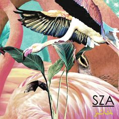Single Serving: SZA - Julia