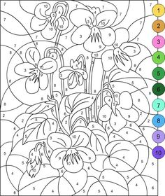 Image result for color by number pages for adults | paint by ...