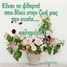 Γλυκιά καλημέρα με υγεία και ζεστά χαμόγελα πάντα και με όμορφες εικόνες τοπ!!!! eikones.top Floral Wreath, Wreaths, Door Wreaths, Deco Mesh Wreaths, Bouquet, Flower Garlands, Flower Garlands, Flower Band, Floral Arrangements