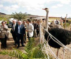Autoridades del Cabildo tinerfeño en una visita realizada a la granja en el año 2002. / DA