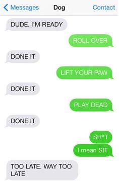 Dog Texting... LMAO!!!