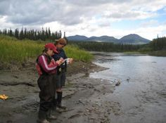 eDNA technology successful in detecting Chinook salmon