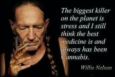 The biggest killer on the planet is stress and I think the best medicine is and always has been cannabis ~ Willie Nelson Hell yeah - you go Willie Weed Quotes, Life Quotes, Stoner Quotes, Ganja, Wizz Khalifa, Bob Marley, Marijuana Facts, Endocannabinoid System, Smoke Weed