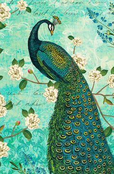 Masterpiece Art - Peacock Arbor IV Blue, $21.60 (http://www.masterpieceart.com.au/peacock-arbor-iv-blue/)