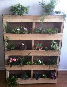 Vertical-Garden-Made-From-A-Shipping-Pallet