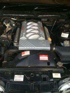 Holden 304 5ltr