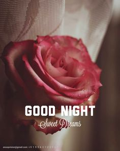Good Night Images Hd, Good Night Quotes, Good Night Sweet Dreams, Friendship, Feelings, Board, Good Night Messages, Be Nice, Planks