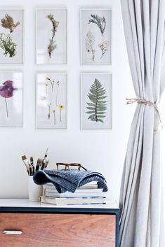 The travel souvenirs you'll want to keep (and display) forever: pressed plant specimens mounted in simple white frames.