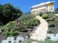 A kert átadásakor Sidewalk, Plants, Side Walkway, Walkway, Plant, Walkways, Planets, Pavement