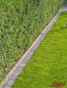 Inspiration Kantstöd is part of Garden pavers - Brick Garden Edging, Stone Garden Paths, Garden Pavers, Lawn Edging, Garden Yard Ideas, Easy Garden, Lawn And Garden, Garden Beds, Sloped Garden