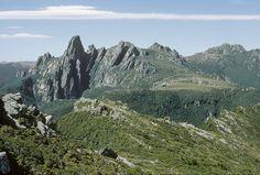 Federation Peak and Thwaites Plateau from The Gables. Eastern Arthurs, SW Tasmania, 8th January, 1970 January, Tasmania, Mountains, Bergen