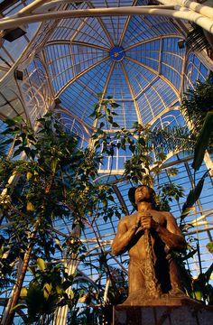 Inside of the greenhouse at the Curitiba Botanic Garden. Curitiba, Paraná, Brazil