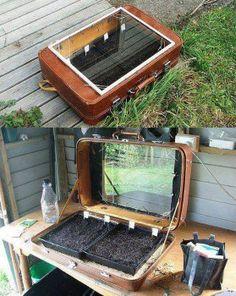 1. Culture en malle Pour les petites plantes ou comme germoir. Découpez votre vieille malle en cuir et fixez une vitre. Vous la laisserez fermée pour créer un effet de serre à l'intérieur. 2. Culti…