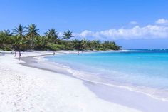 Living in the Caribbean: Our Top 10 Best Islands to Live On   Islands