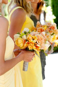 colors, and garden roses...