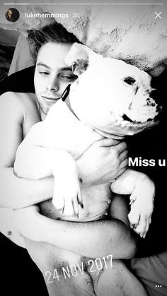 Luke Hemmings and Molly Luke Roberts, Luke Hemmings, 5 Seconds Of Summer, Petunias, Beautiful Boys, 5sos, French Bulldog, Labrador Retriever, Pitbulls