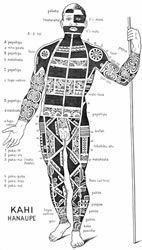 Schematic view of a tattooed Marquesan warrior.