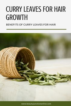 Discover how to use curry leaves for hair growth