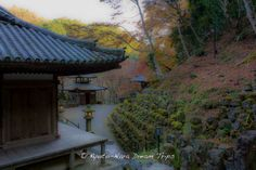 Otagi Nenbutsu-ji (愛宕念仏寺) during the autumn season of 2013 in Ukyō-ku, Kyoto. On the left the Hondo, in the middle the Furei Kannon Hall and on the far right the Hoyoke Jizo Bosatsu hall and of course the many mysterious Rakan (石像千二百羅漢) silently waiting in the autumn air.