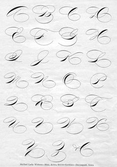 ✍ Sensual Calligraphy Scripts ✍ initials, typography styles and calligraphic art - Anna Stutt-Gittins