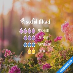 Peaceful Mind - Essential Oil Diffuser Blend