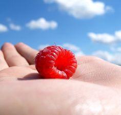 Malinový olej je nejlepší pro vaši pokožku... Diy Deodorant, Sunscreen, Raspberry, Homemade, Fruit, Food, Home Made, Essen, Meals