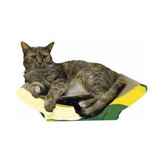 Banana Shape Cat Scratcher #fortailsonly Stacie Marshman, Founding Independent Handler, Microchip #FH100 www.fb.com/paradisepetboutique