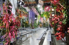 Dior Catwalk Paris SS14 - News - Frameweb